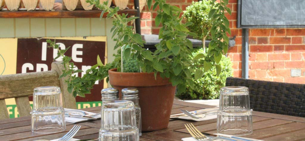 SR patio table with herbs